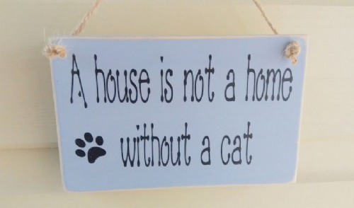 A House Is Not A Home Without A Dog/CAT Plaque